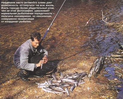 река осетр рыбалка видео